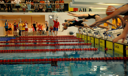 CSIT Swimming Championships for Youth Swimmers in Holland